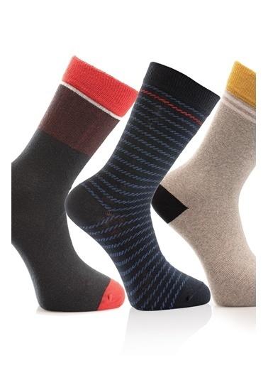 Miorre 3'lü  Erkek Çorap Renkli